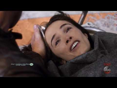 Grey's Anatomy  Season 14 Opening Scene - Megan,  Owen  and Meredith Season 14 Episode 1