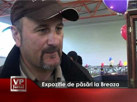 Expoziţie de pasări la Breaza