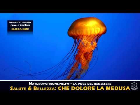 come curarsi subito dal bruciore della medusa!