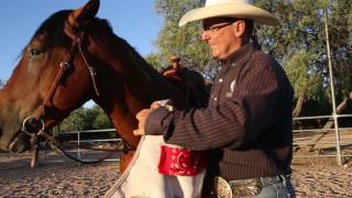 Tucson horse trainer works with mustang for the Extreme Mustang Makeover challenge.  Video by A.E. Araiza