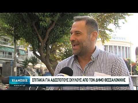 Σπιτάκια για αδέσποτους σκύλους από τον Δήμο Θεσσαλονίκης   25/09/2020   ΕΡΤ