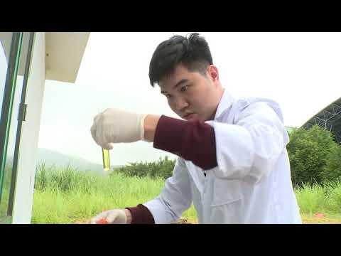Tiếp tục lấy mẫu và phân tích mẫu nước