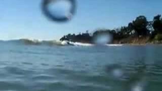 Surfing Serenas in Santa Barbara