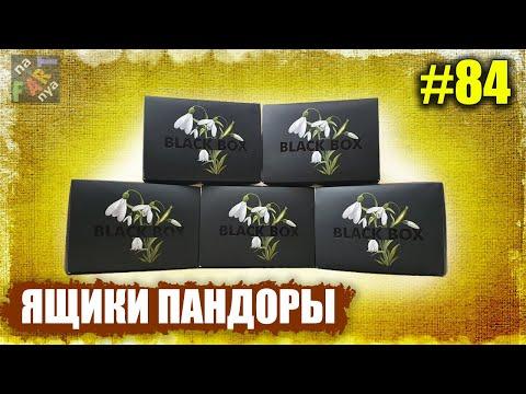 5 коробок Black Box | Распаковка | ЖУТКИЙ ОБМАН. Что кладут вместо iPhone?