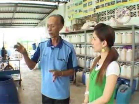 ปุ๋ยน้ำชีวภาพ - สถานที่ซื้อวัสดุอุปกรณ์ : ร้านขายอุปกรณ์เครื่องสับ เครื่องบด ร้านหนำเฮง ปทุมธานี ,...