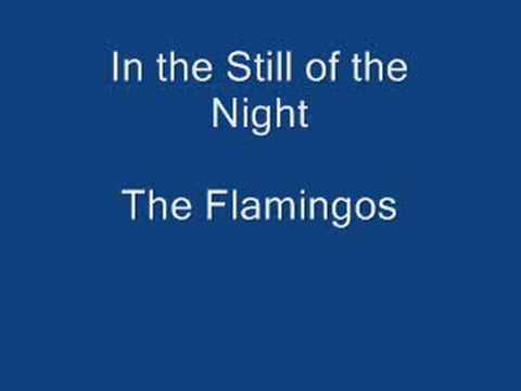 Tekst piosenki The Flamingos - In the Still of the Night po polsku