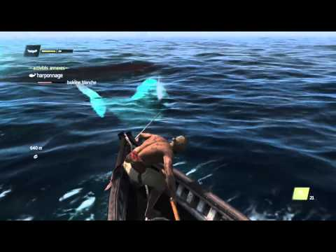 assassin s creed 4 black flag comment trouver la baleine blanche