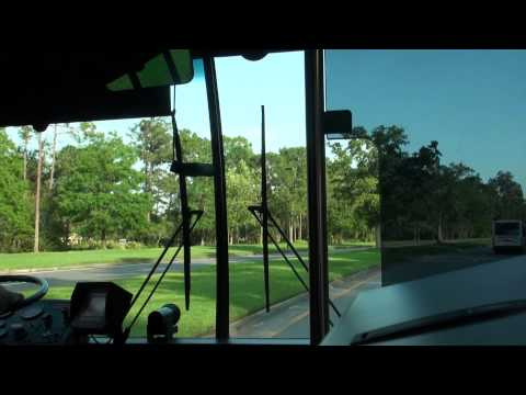 Walt Disney - A ride on a Disney Transport Gillig Advantage bus from the Magic Kingdom Park to the Paddock section of Disney's Saratogs Springs Resort & Spa at Walt Disney...