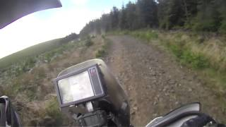10. Kielder Rally 2013 (special stage)