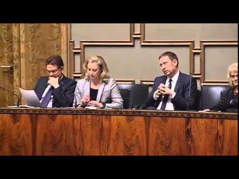 Timo Soini kommentoi hallituksen rakennepakettia tekijä: BergableYo