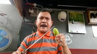 Video NGERI IWAN KADALPENDUKUNG AHOK  MAU POTONG LEHER TNI, TENTARA MARAH KELUARKAN KESAKTIAN MP3, 3GP, MP4, WEBM, AVI, FLV Desember 2017