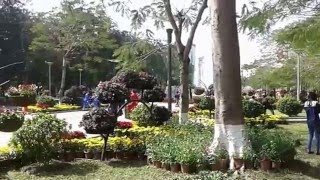 Haiphong Vietnam  City pictures : Video (Centre Haiphong Vietnam, date 06.02.2016)