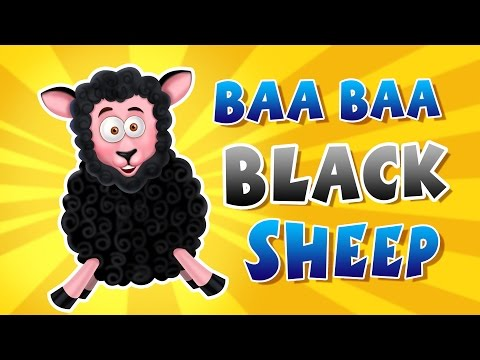 Baa Baa Black Sheep || Nursery Rhymes Songs