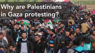 Gaza Protests in Context