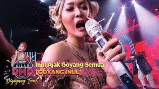 Video Inul Ajak Goyang Semua [GOYANG INUL] - DMD Digoyang Inul (22/11) MP3, 3GP, MP4, WEBM, AVI, FLV April 2019