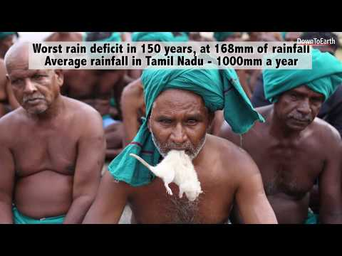 Dry in the delta: Tamil Nadu drought