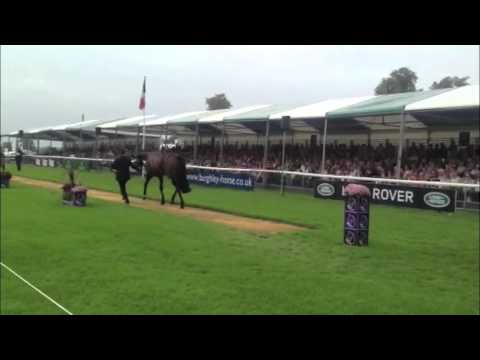 Burghley trot-up: horses behaving badly [VIDEO]