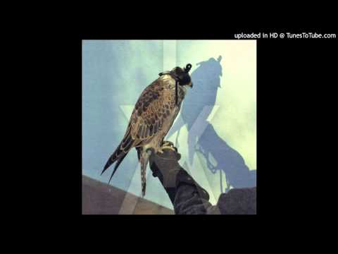 Coalition - Iceage