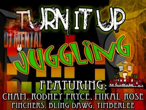 TURN IT UP RIDDIM MIX [MADHOUSE RECORDS] DANCE HALL JAN 2011 HITS.wmv