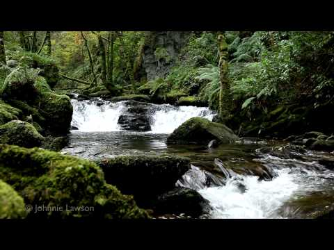 klasik - Relax with soothing classical music as you sit on the banks of a tranquil mountain stream. As I wandered through the spectacular Killarney National Park in C...