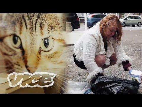Serial Cat Killer: The Hunt for a Pet Murderer