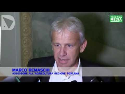 MARCO REMASCHI SU TELEFONATA A REMO SANTINI - dichiarazione