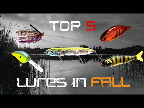 Top 5 Fall Baits to Catch Bigger Bass