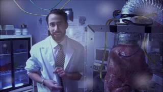 Nonton Evolution And Transhuman Pharamkia In Strange Blood Movie Film Subtitle Indonesia Streaming Movie Download