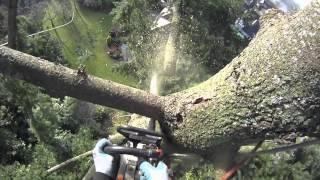 Video Fir tree removal using speed line | Arborist Dan Holliday (climbingarborist.com) MP3, 3GP, MP4, WEBM, AVI, FLV Desember 2017
