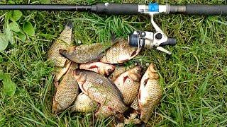прикормка для белой рыбы летом