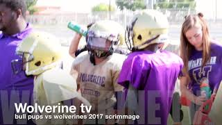 This video is about wolverines jv scrimmage vs bullpups.