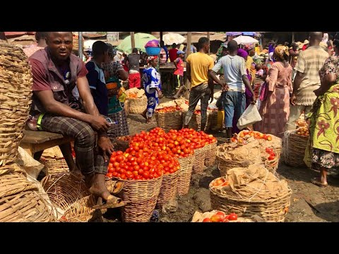 THE CHEAPEST & BIGGEST PEPPER MARKET IN IBADAN NIGERIA ! SASA MARKET