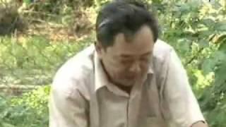 KT chăn nuôi Nhím (III)