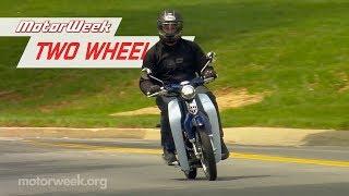 5. 2019 Honda Monkey and Super Cub | Two Wheelin'