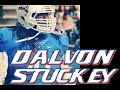 Dalvon Stuckey vs Valdosta State (2014)