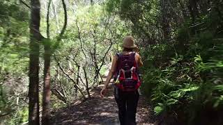 Ein Tag in den Blue Mountains mit Outandabout