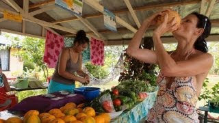 Rarotonga Cook Islands  city photos : The Cook Islands, Travel Video Guide - Around Rarotonga