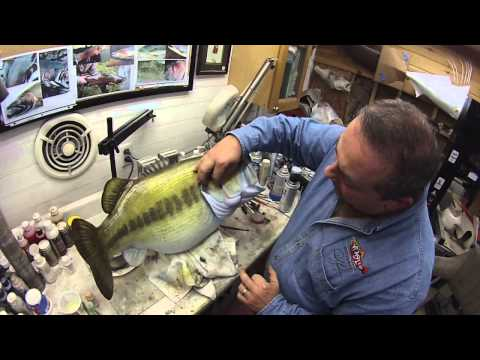 MY PERSONAL RICK KRANE LARGEMOUTH BASS WORKSHOP CLIP