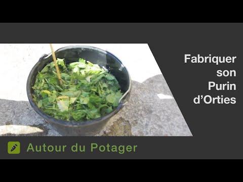 La fabrication du purin d'orties