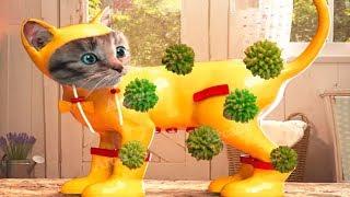 Video Fun Pet Care Game - Little Kitten Adventures - Play Costume Dress-Up Party Mini Games For Children MP3, 3GP, MP4, WEBM, AVI, FLV Mei 2019