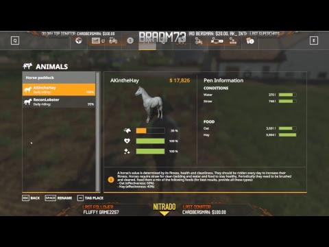 Farming Simulator 19 - Pre-Release Gameplay Live Stream #8