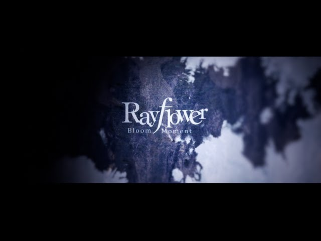 Rayflower 7.19 Release「BloomMoment」MusicVideo〜Short ver〜