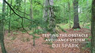 We put the new DJI Spark Camera Drone to the test with deck rails, small steel tubes and all types of trees, bushes and branches. Order your Spark at: https://goo.gl/k3JL6kFacebook: https://www.facebook.com/droneflyers/Twitter: https://twitter.com/bestquads?lang=enFull Droneflyers.com blog at http://www.droneflyers.com