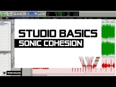 Sonic Cohesion   Studio Basics   WinkSound