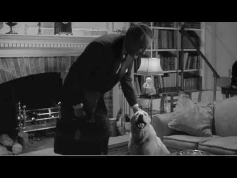 Cool Dog In VILLAGE OF THE DAMNED (1960) Scene 2