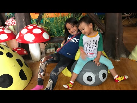 Playing Tricycle | Indoor Playground | Kenzo main Sepeda Unik dan Lucu