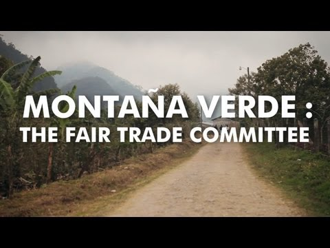 The Fair Trade Committee