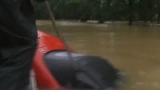 Raw: Woman, Dog Rescued From Sinking Car in La.
