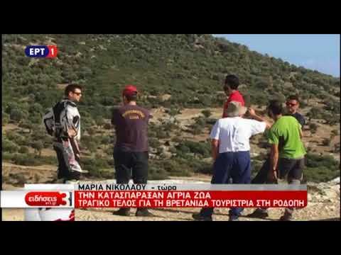 Video - Αλεξανδρούπολη: Συνεχίζονται οι έρευνες για τη Βρετανίδα τουρίστρια. Βρέθηκαν μέλη που φέρουν σημάδια από επίθεση ζώων