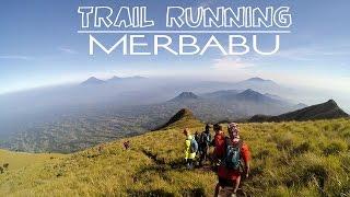 Video Merbabu Trail Running MP3, 3GP, MP4, WEBM, AVI, FLV November 2018